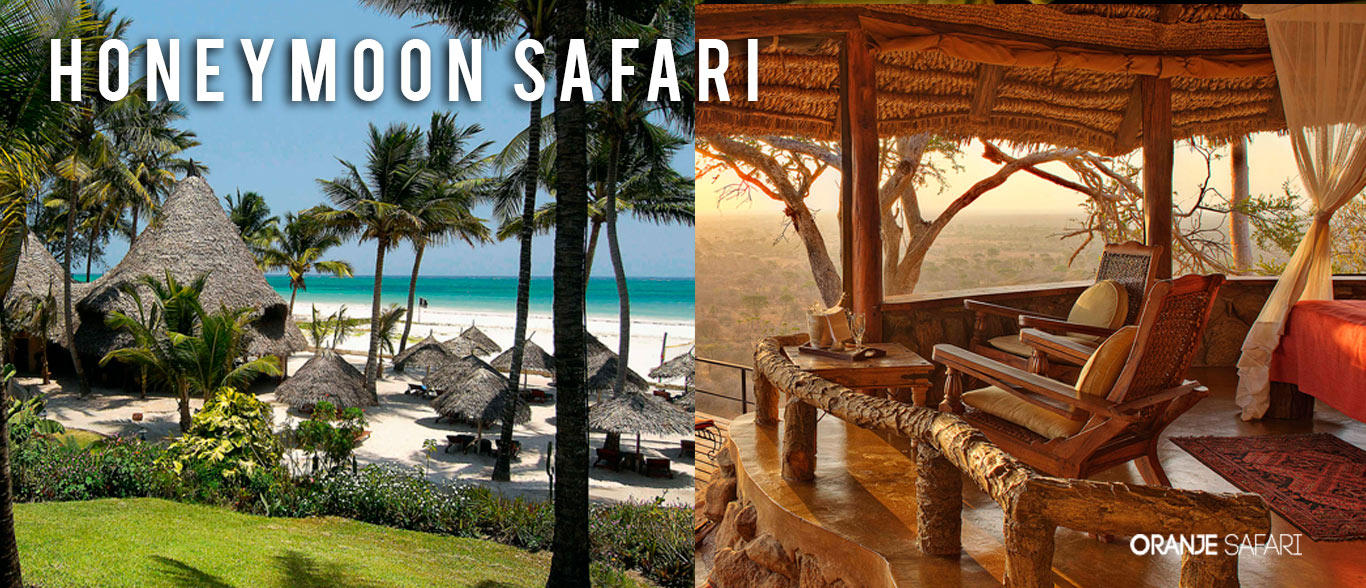 honeymoon safari beach